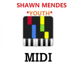 Shawn Mendes Youth Midi