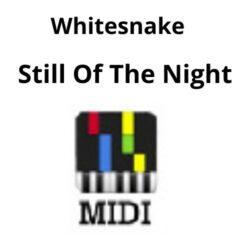 Still Of The Night